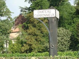 Vue de la route du Château Carbonnieux
