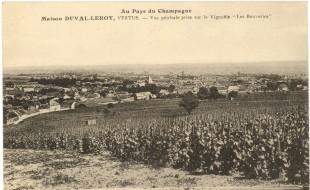 Français: Le Clos des Bouveries est une parcelle de vigne du village de Vertus (1er Cru) orienté plein et situé à mi-coteau. Le Clos des Bouveries appartient historiquement à la maison de Champagne Duval-Leroy.