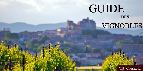 Le Guide des vignobles: tout savoir sur les vignobles de Bordeaux, Champagne, Bourgogne...