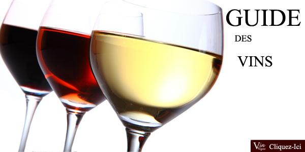 Le guide des vins de France : conservation, service, dégustation, tous les vins analysés !