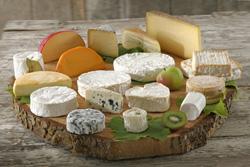 Plat de fromage: accords Mets et Vins