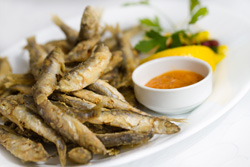 Poisson frit - Beignet de poisson: accords Mets et Vins