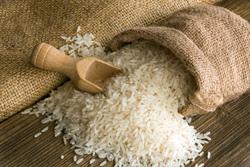 Riz - Gratin de riz: accords Mets et Vins