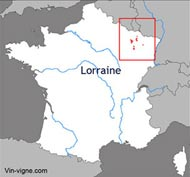 Vignoble lorraine