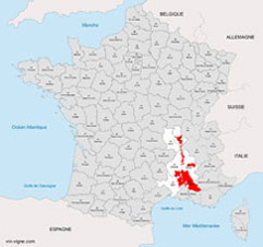 vignoble du rhone